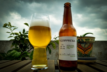 Citra Single Hop Session IPA - Viceversa Cervecería